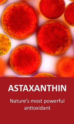 Astaxanthin Benefits 6,000 x Stronger Than Vitamin C