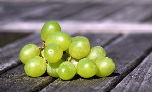PanaSea Ingredient – White Grape (Vitis vinifera)