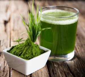 PanaSea Ingredient - Wheatgrass (triticum aestivum)