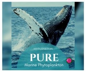 MyPlanktons PURE marine phytoplankton
